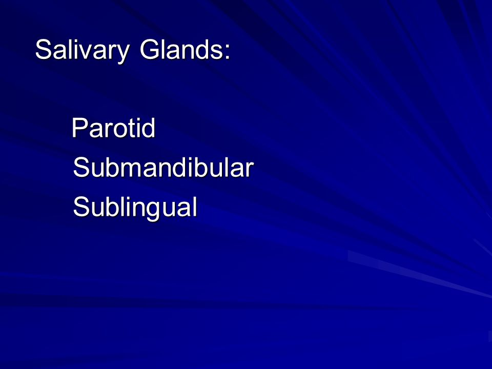 Salivary Glands: Parotid Submandibular Sublingual