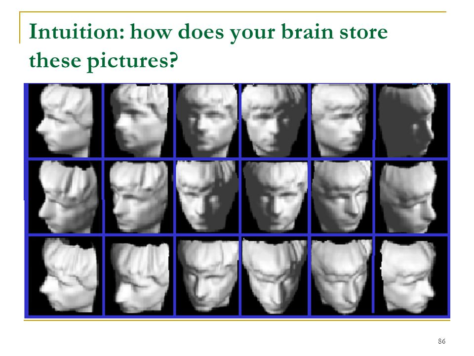 Intuition: how does your brain store these pictures