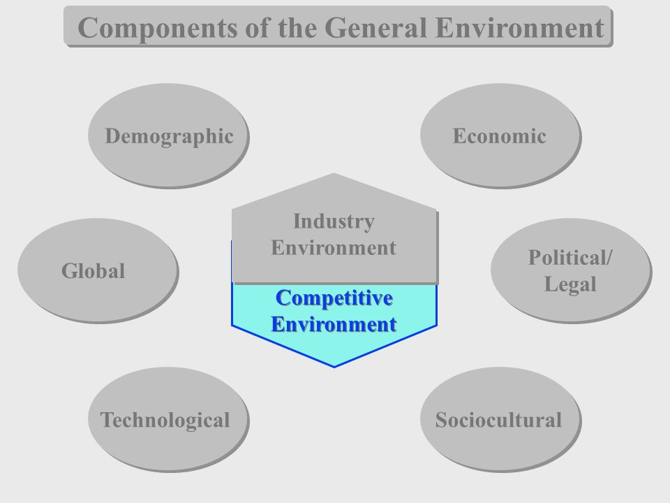 three elements of general environment Let's see the elements or dimensions of the general environment economic dimension the economic dimension of an organization is the overall status if the economic system in which the organization operates.