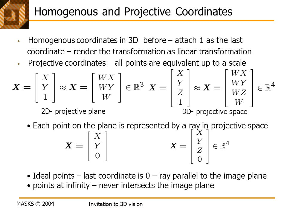 Homogenous and Projective Coordinates