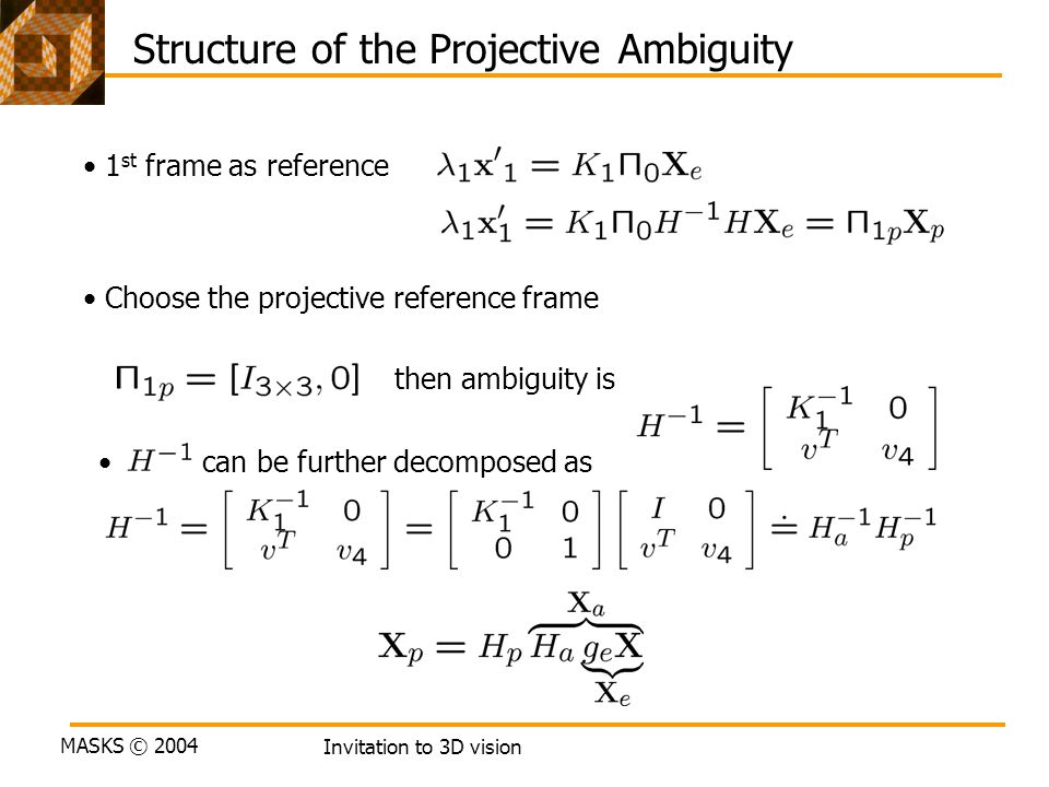 Structure of the Projective Ambiguity
