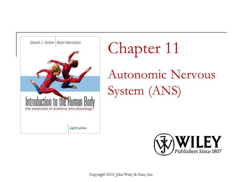 Chapter 11 Autonomic Nervous System (ANS)