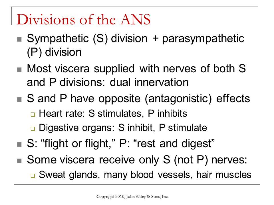 Divisions of the ANS Sympathetic (S) division + parasympathetic (P) division.