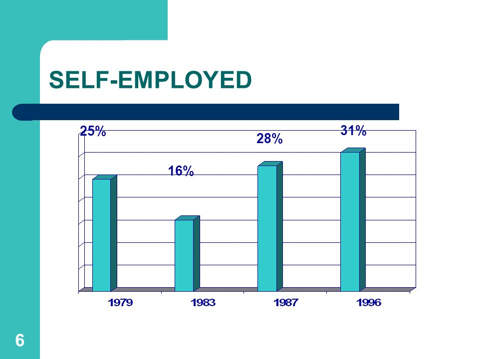 SELF-EMPLOYED 25% 31% 28% 16%