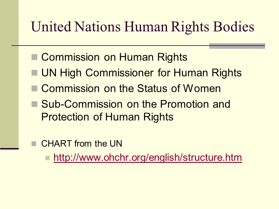 United Nations Human Rights Bodies