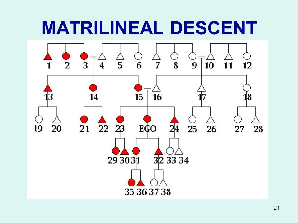 MARRIAGE KINSHIP ppt video online download – Kinship Diagram Template
