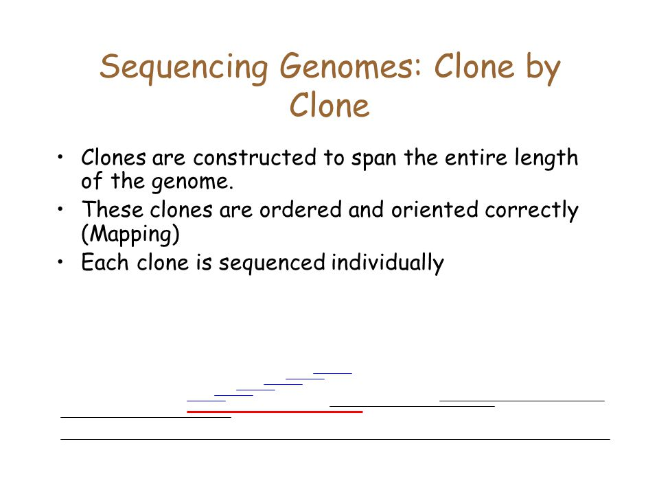 Sequencing Genomes: Clone by Clone