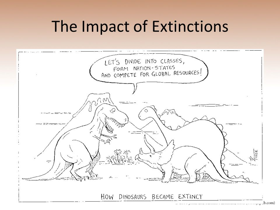 effects cow extinction