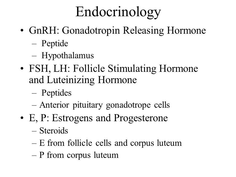 Endocrinology GnRH: Gonadotropin Releasing Hormone