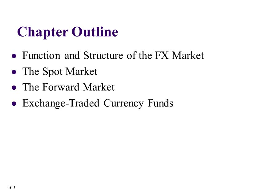 Function and Structure of the FX Market