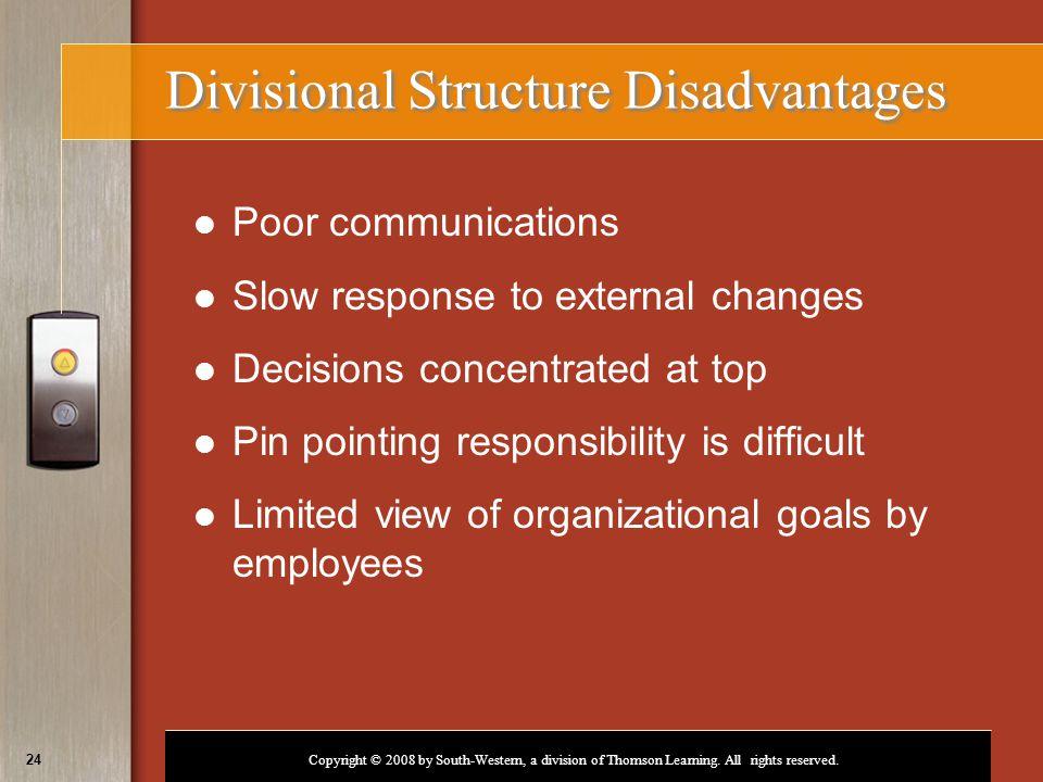 Divisional Structure Disadvantages
