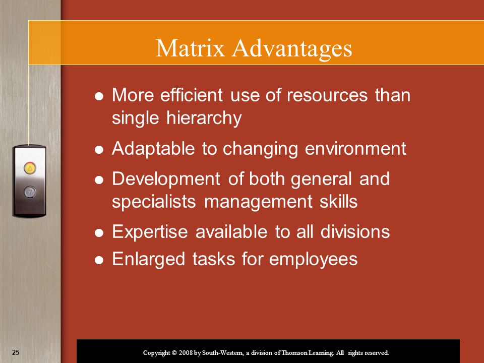 Matrix Advantages More efficient use of resources than single hierarchy. Adaptable to changing environment.