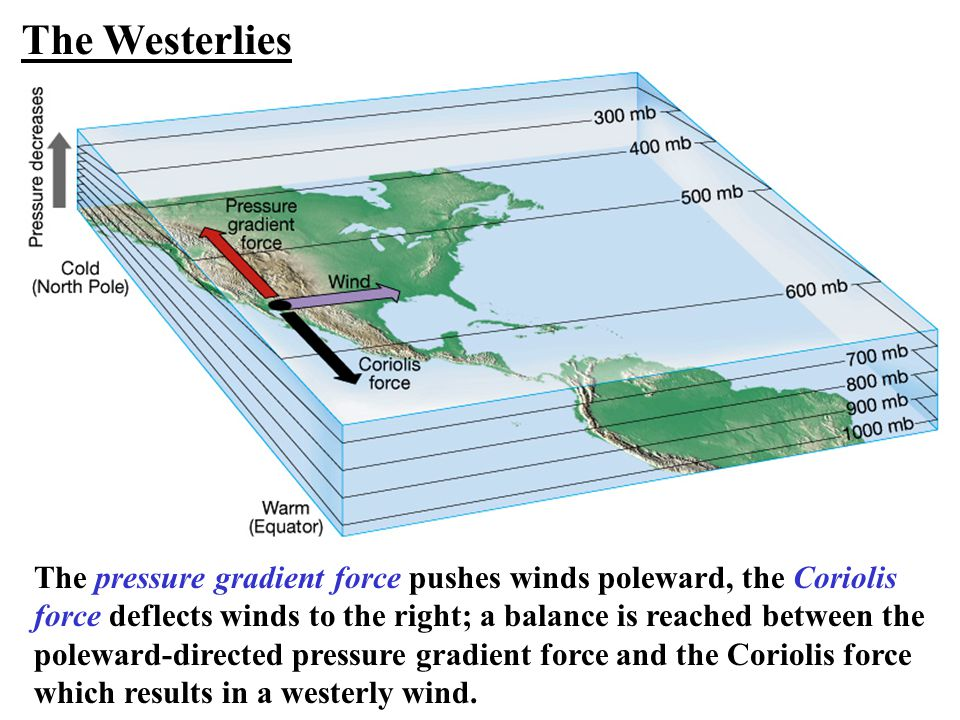 The Westerlies The pressure gradient force pushes winds poleward, the Coriolis. force deflects winds to the right; a balance is reached between the.
