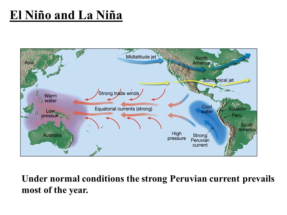 El Niño and La Niña Under normal conditions the strong Peruvian current prevails most of the year.