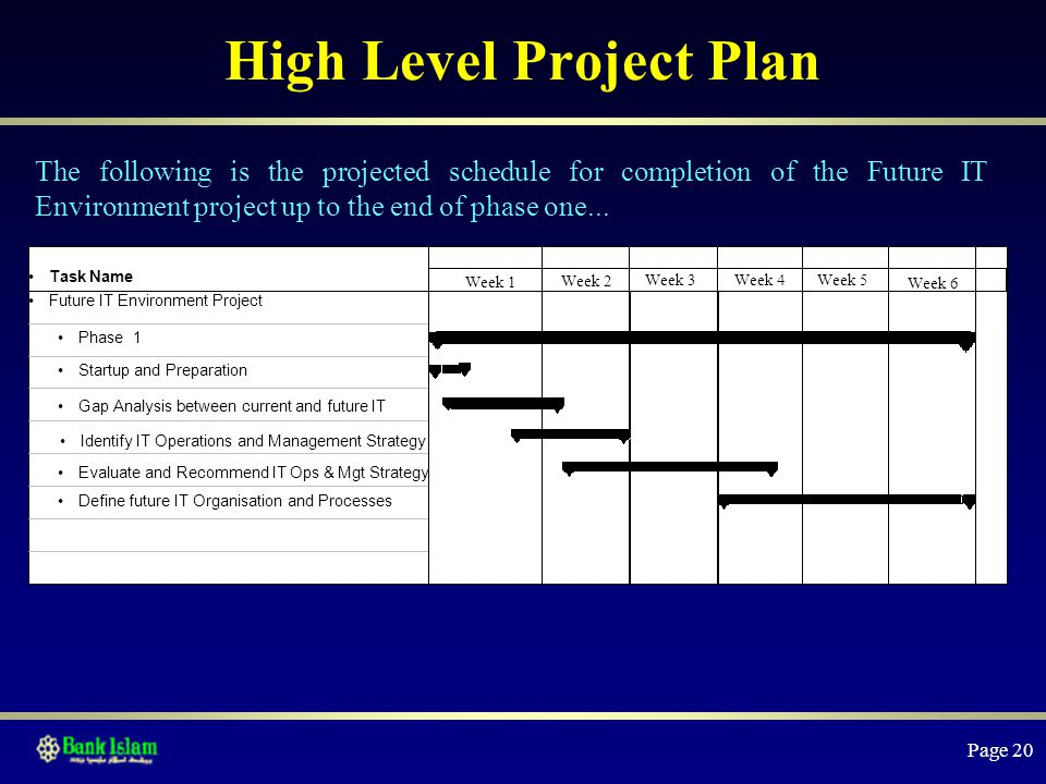 High Level Project Plan Example  BesikEightyCo