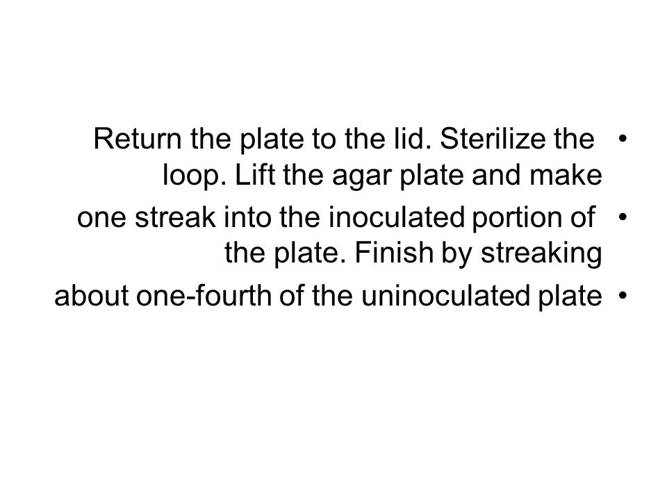 Return the plate to the lid. Sterilize the loop