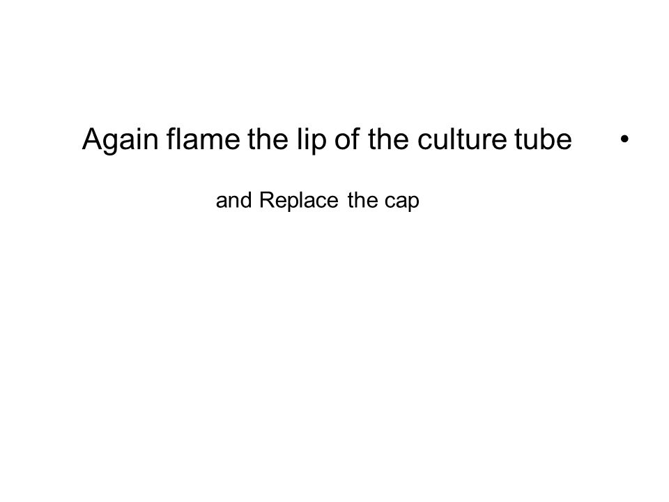 Again flame the lip of the culture tube