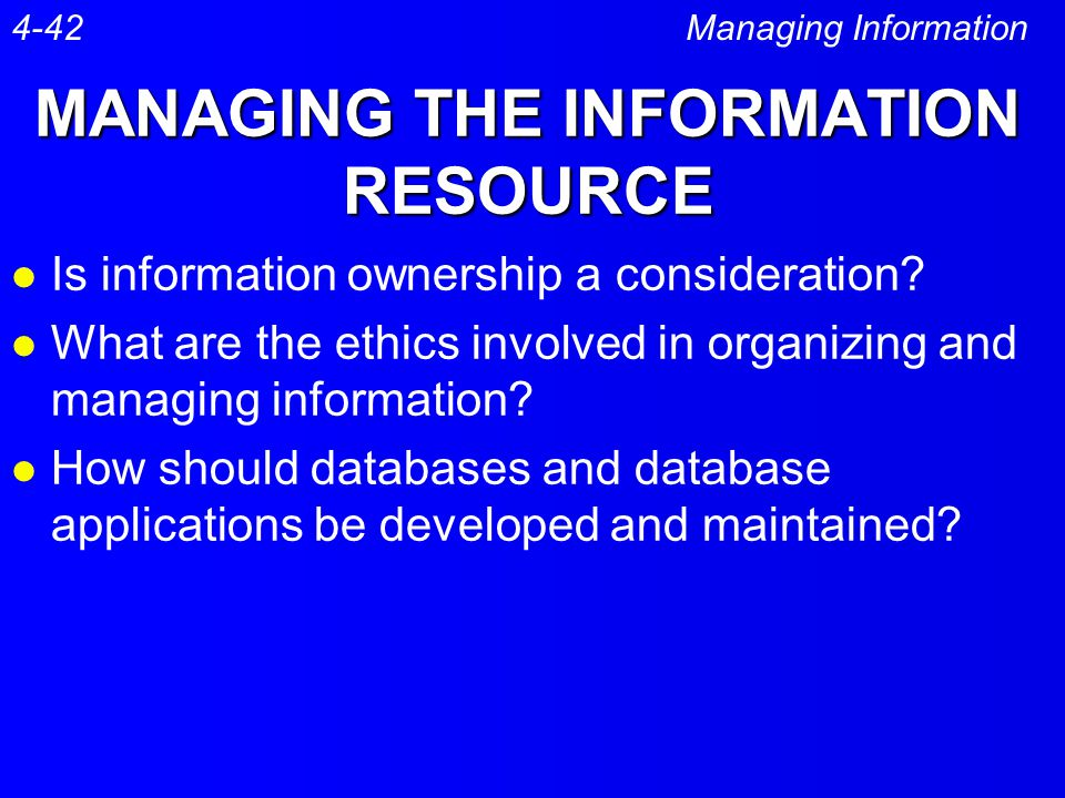 MANAGING THE INFORMATION RESOURCE