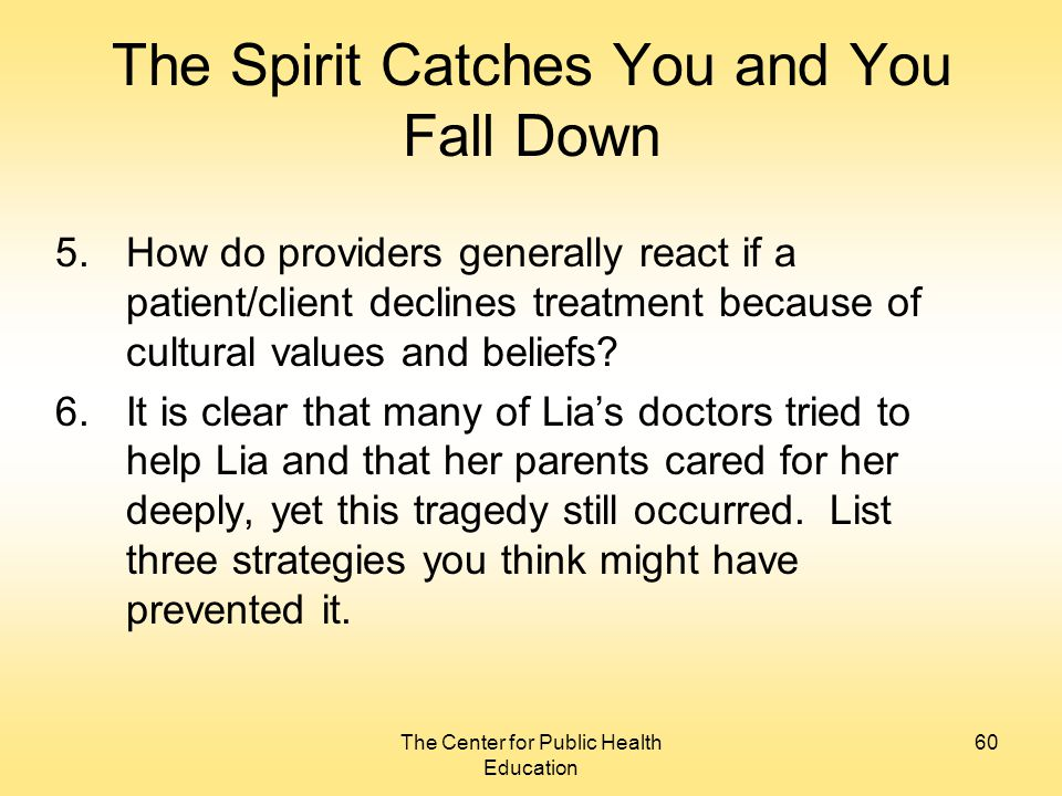 a literary analysis of the spirit catches you and you fall down Check out our thorough summary and analysis of this literary masterpiece a  anne fadiman's the spirit catches you and you fall down 11-5-2018.