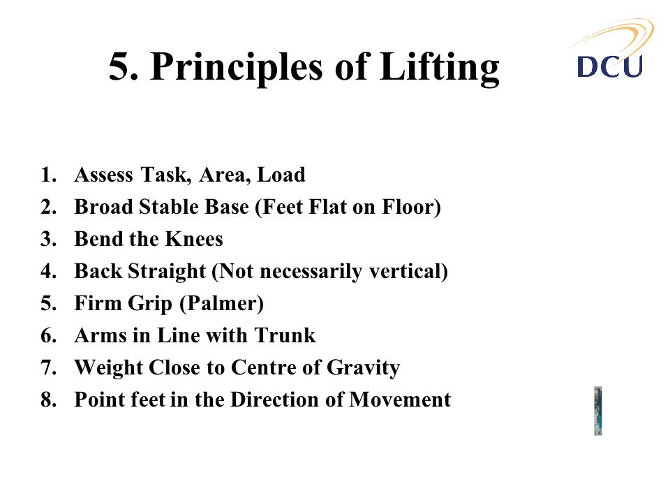 5. Principles of Lifting Assess Task, Area, Load