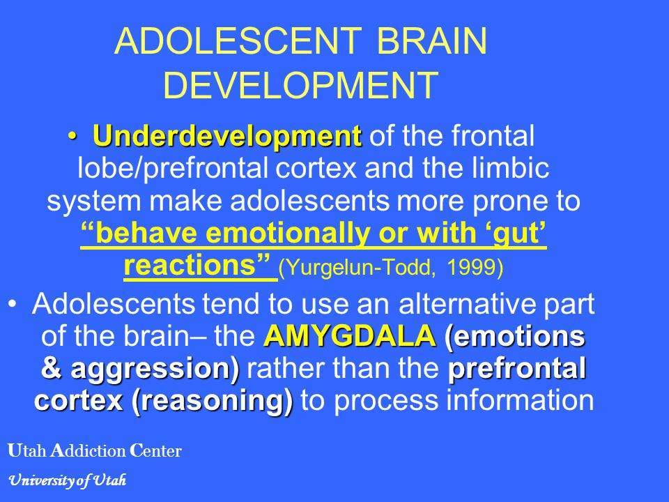 maturation of the adolescent brain Across disciplines ranging from anthropology and economics to behavioral genetics and developmental neuroscience, researchers continue to probe deeply into the maturation process of the adolescent brain, and how it relates to changes in mood, cognition and social behaviors that are experienced and.