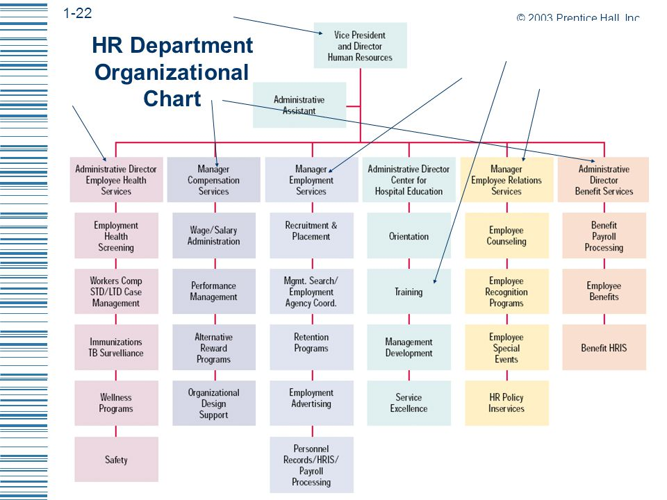 the role of hr department in The key functions of the human resources management (hrm) the hr department plays an active role in preparing the business and marketing plans for the.