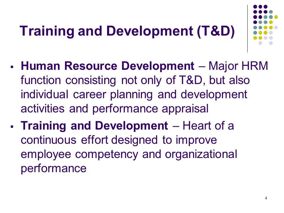 Training and Development (T&D)