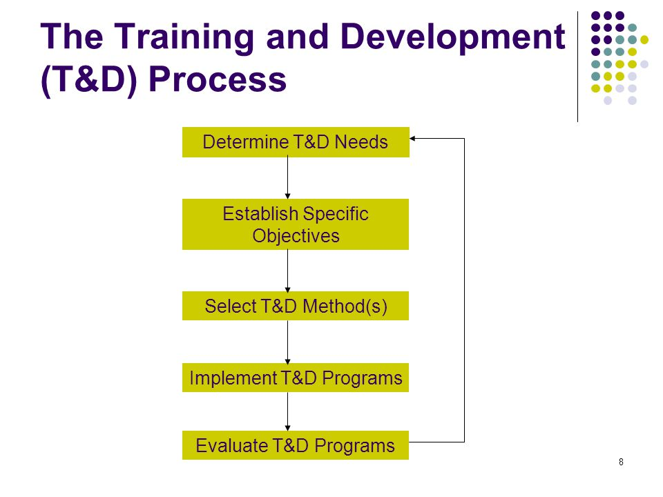 The Training and Development (T&D) Process