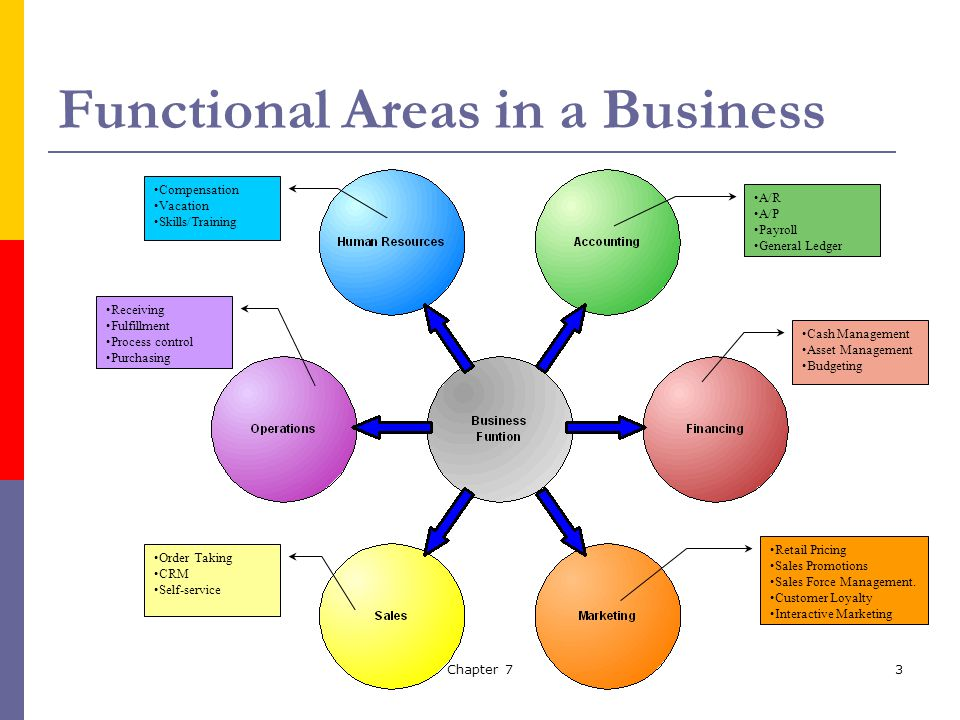 management and functional areas