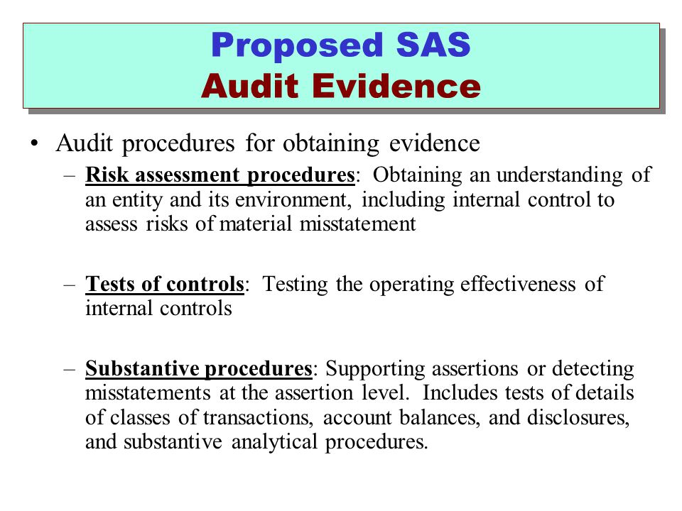 Proposed SAS Audit Evidence