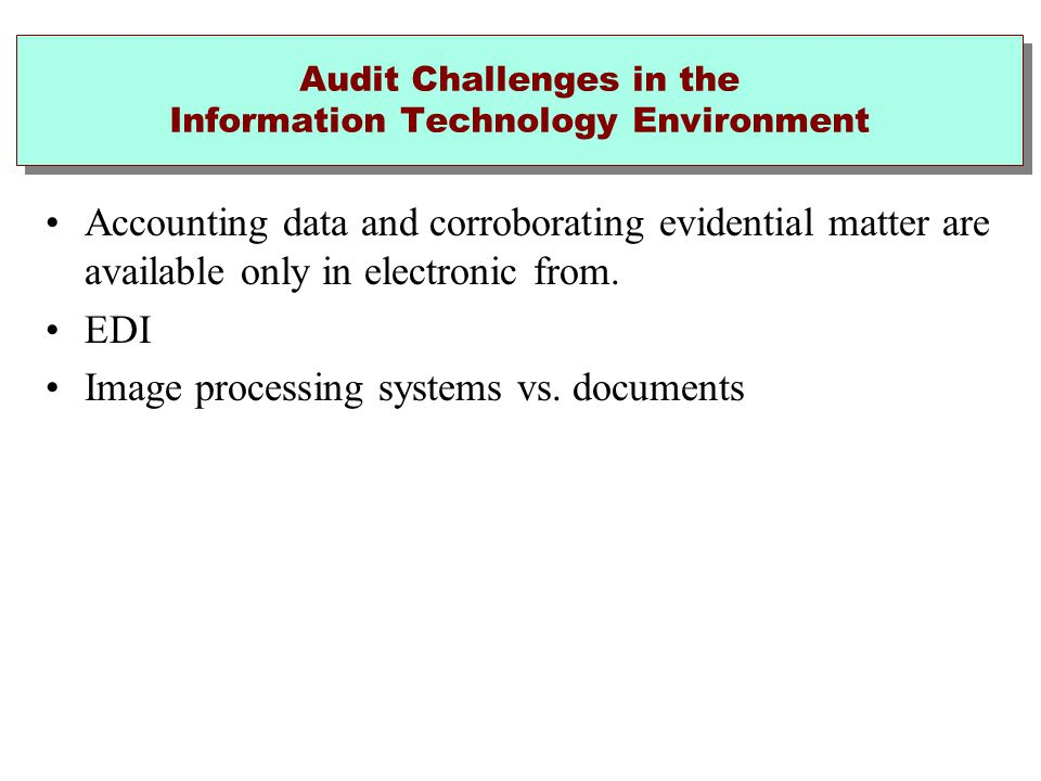 Audit Challenges in the Information Technology Environment