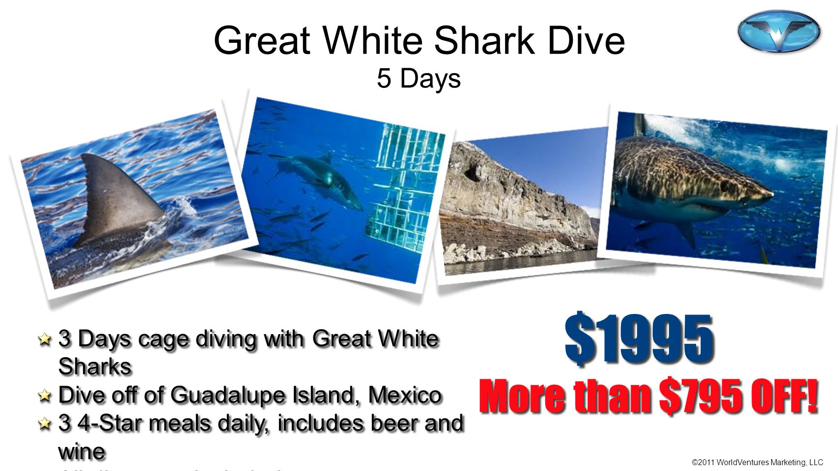 $1995 More than $795 OFF! Great White Shark Dive 5 Days