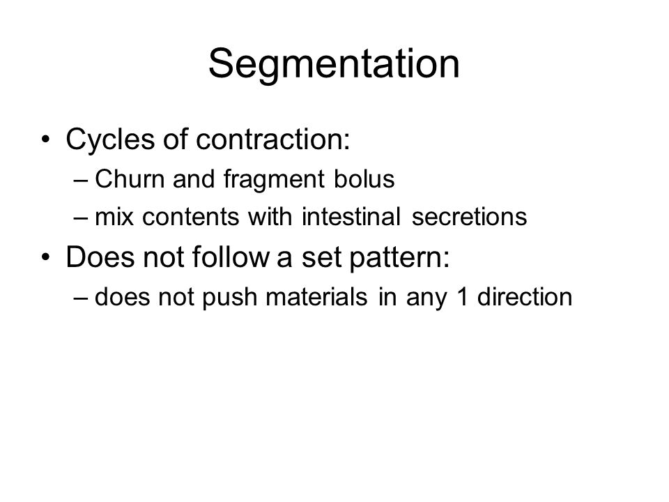Segmentation Cycles of contraction: Does not follow a set pattern: