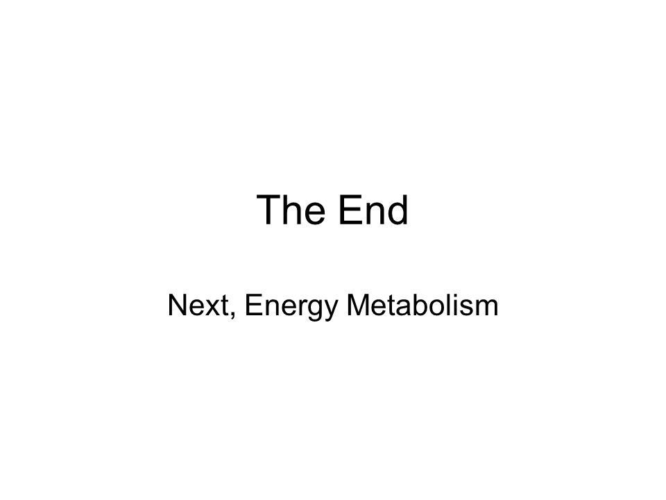 Next, Energy Metabolism