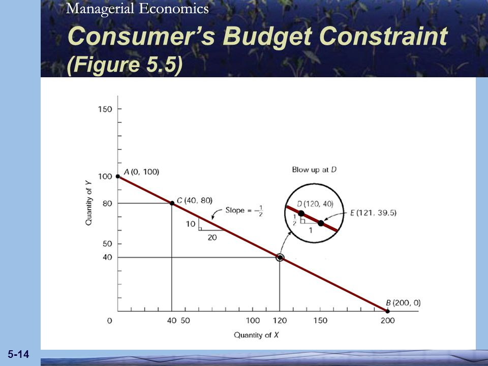Consumer's Budget Constraint (Figure 5.5)
