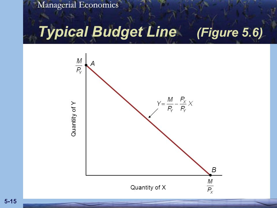 Typical Budget Line (Figure 5.6)