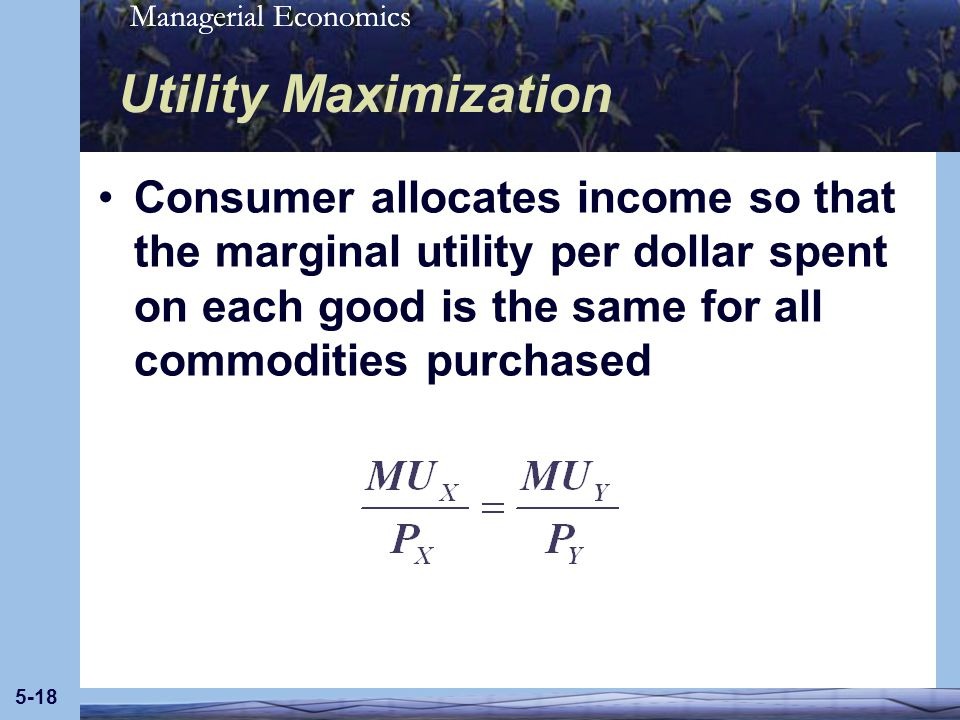 Utility Maximization Consumer allocates income so that the marginal utility per dollar spent on each good is the same for all commodities purchased.