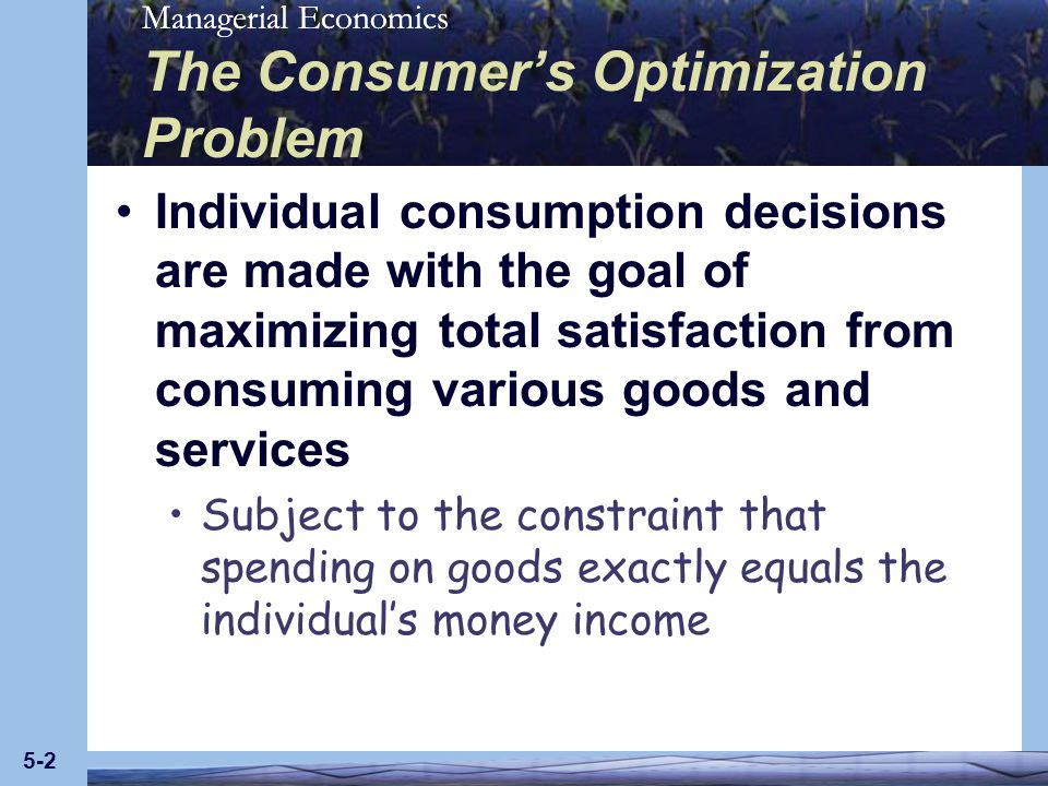 The Consumer's Optimization Problem