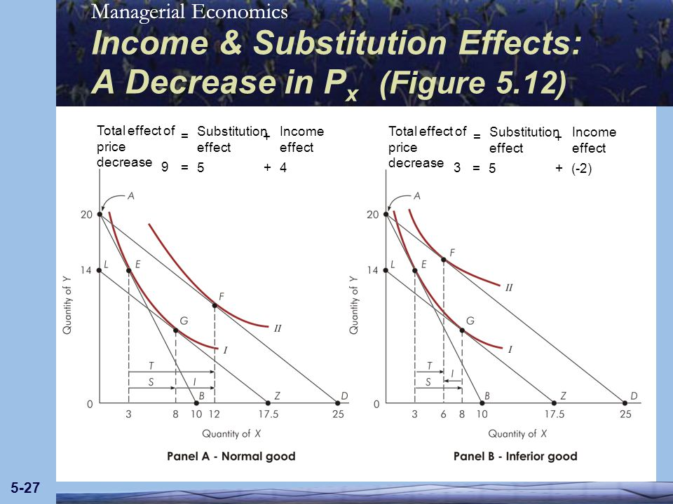 Income & Substitution Effects: A Decrease in Px (Figure 5.12)