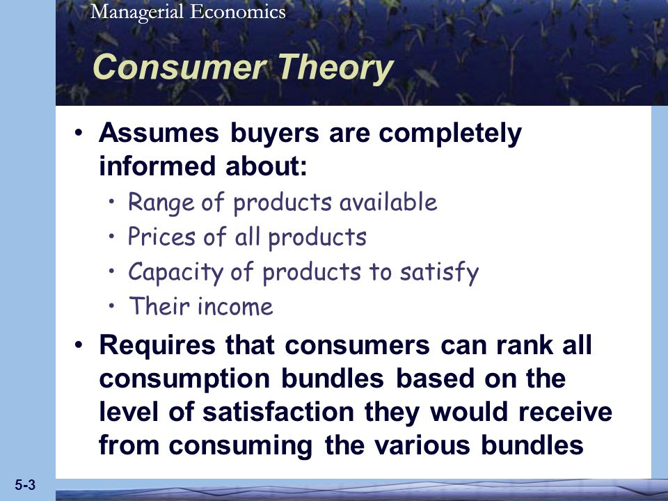 Consumer Theory Assumes buyers are completely informed about: