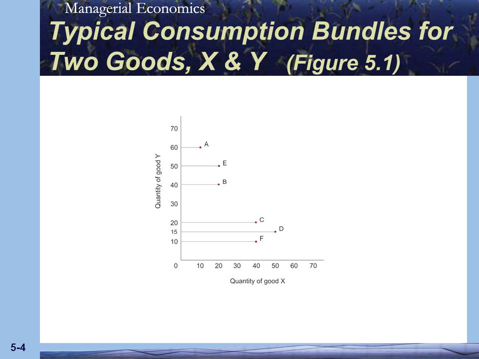 Typical Consumption Bundles for Two Goods, X & Y (Figure 5.1)