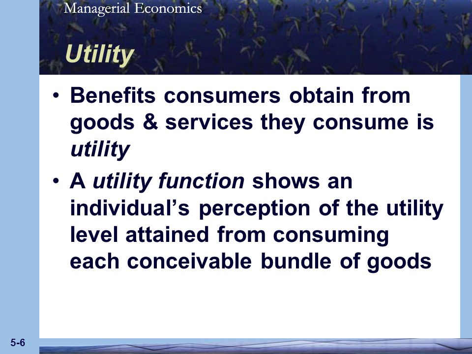Utility Benefits consumers obtain from goods & services they consume is utility.