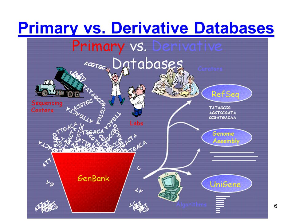 Primary vs. Derivative Databases