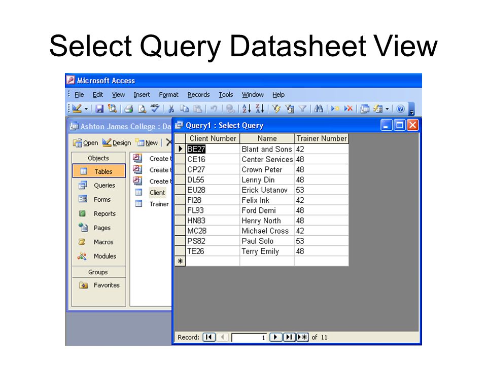 Select Query Datasheet View