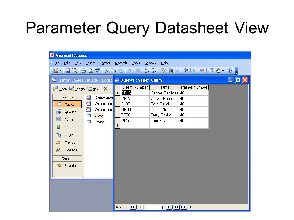Parameter Query Datasheet View
