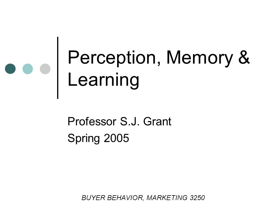 Perception, Memory & Learning