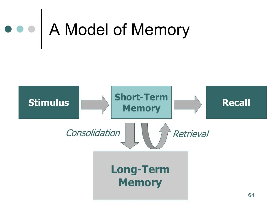 A Model of Memory Long-Term Memory Stimulus Short-Term Memory Recall