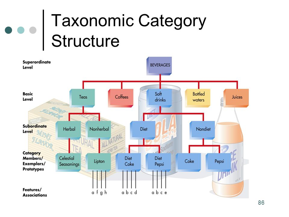 Taxonomic Category Structure