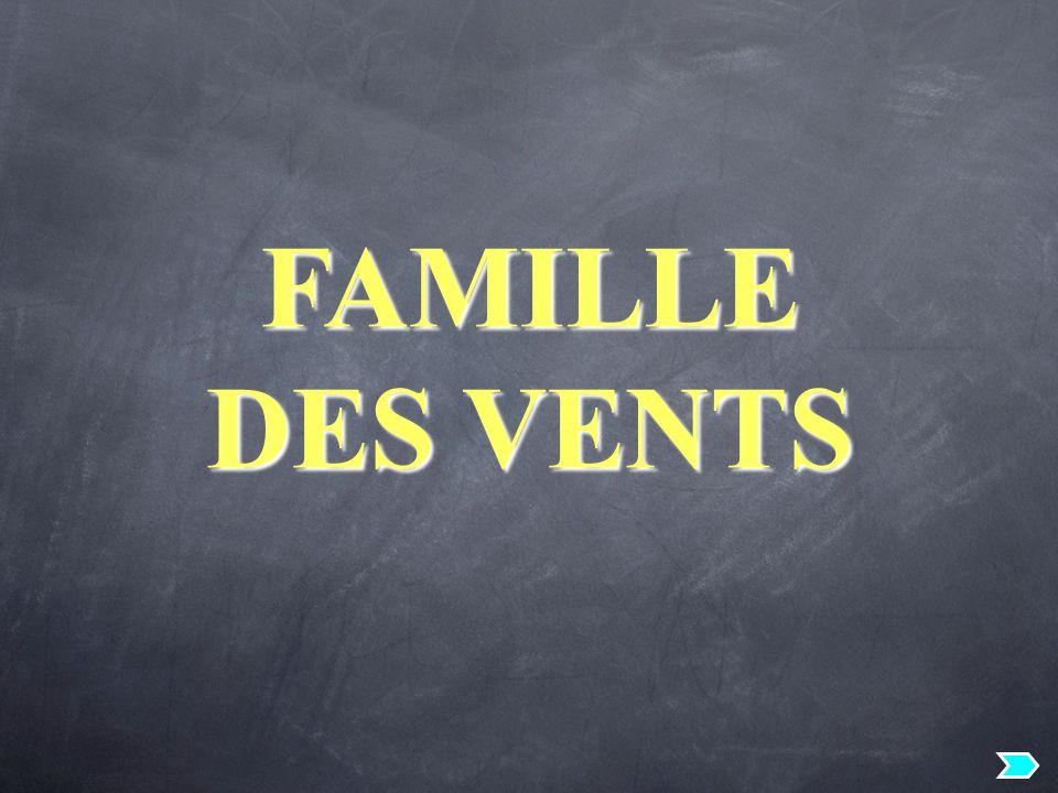 FAMILLE DES VENTS