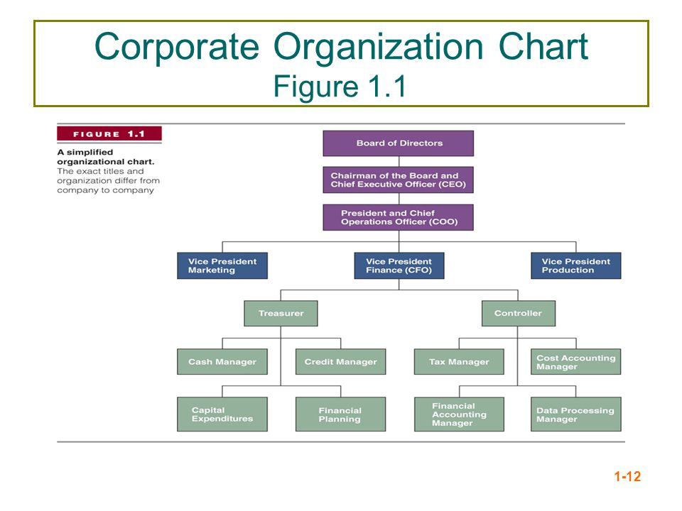 Corporate Organization Chart Figure 1.1